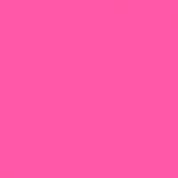 De Dag van Roze Maandag