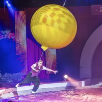 The story behind – Kerstcircus Ahoy